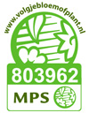 mps100.jpg
